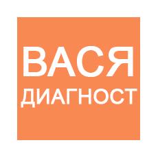 Установка программы Вася Диагност