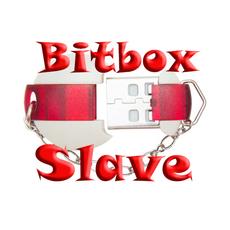 Модуль BitBox Slave