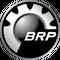 Лицензия BRP BUDS1 Мегатехник 2 года