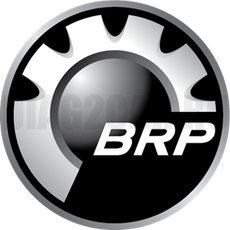 Лицензия BRP BUDS1 Мегатехник 1 год