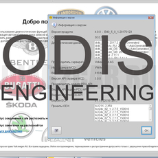 Установка программы ODIS Engineering 9.0.6